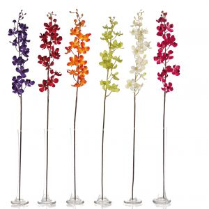 Vanda Orchid Spray x 13 real touch flowers - 2357
